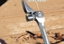 This hammer is all you need for repairingAvailable here