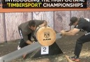 This is the 'Timbersport' Championships