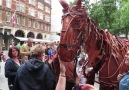 This life-size War Horse puppet is amazing!