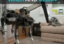 This robot giraffe can clean your house.