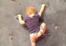 This toddler is a rock-climbing pro!