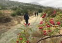 TODEX - Hizan Doğa Yürüyüşü etkinliğimizden.....