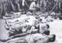 Topcagic Senad - Na danasnji dan 1945. Francuzi u Alziru...