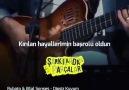 Tülay Koç -