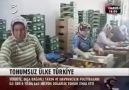Türkiyede Tarım Nasıl Bitirildi (Tohumsuz Ülke Türkiye)