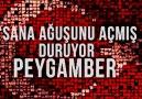 Türk kimdir ? Türk nedir ?