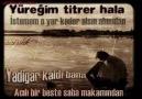 Türkü Diyarı - Daimi Özdoğan (Kim Ağlatmış Seni Yarım )