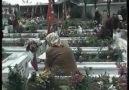 TÜRKÜ - Selda Bağcan gömdüm oğul seni toprağa gömdüm