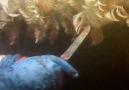 Tyson Caught on Hidden Camera Ripping Heads Off Live Animals