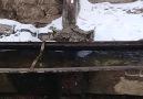 Ünal Tuncer - Kars Akyaka Esenyayla köyümüz ( Uzunkise)