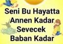 Une publication de Bir Türküdür Hayat le 25 janvier