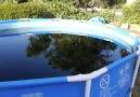 Un youtubeur s'est amusé à remplir sa piscine de Coca-Cola, de...