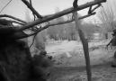 Vatan Sevdası - Ağrı Tutakda bir köy araması sonucunda...