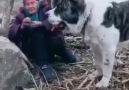Ve insan&- Bir Köpeğin Dostluğu Bir Dostun Köpekliğinden...