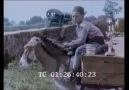 VIDEO Bursa 1896 (Renlendirilmiş Video Hand Colored Video)