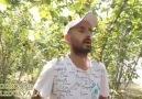 (Video ) Fındık bahçesinde içtima...