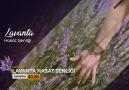 Vokal Sanat Atölyesi Katkılarıyla Rabia... - Mehmet Fatih Güven