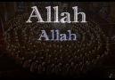Vur Defe ALLAH Desin