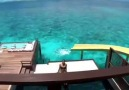 What it&like waking up at Jumeirah Vittaveli Maldives &