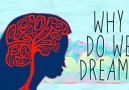Why do we dream Here are 7 of the top theories