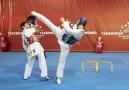 World Taekwondo Training Program