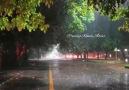 Yağmura şemsiye mi açılır Yağmur ile... - Papatya Kokulu Szler