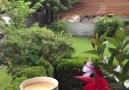 Yağmur Damlası - Insan bazen bazı seylere hasret kalır...