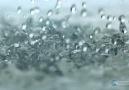 Yağmur Mucizesi