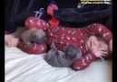 Yatak Keyfi Yapan Minikler