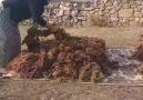 Yıkıldı Gönül sarayım... - Doğunun Yıkılmaz Kalesi Erzurum