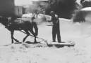 1900 yılların tarım aletleri böyleydiGörüntü 8 & 10 senelik tir