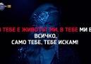- YouTube -->