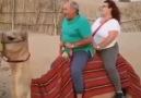 Zavallı deve bir türlü toparlayamadı - Kemal Sunal Tadında Paylaşımlar