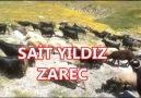 Zazaca Müzikler - Sait Yıldız - Zarec Facebook