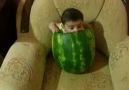 Zebeş û Zarok :)