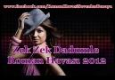 Zek Zek DaDumLe - Roman Havası 2012