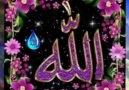 Zikir Kalbe Şifadır 1 Kez Allah c.c Yazalım