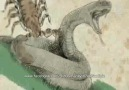 ◄►ALLAH Teala Kulundan Vazgeçmez◄►İzle,İzlet,Paylaş [HQ]