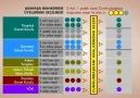 Anayasa Değişikliği-11 [HQ]