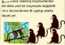 BEŞ MAYMUN HİKAYESİ (TOPLUMSAL/KURUMSAL NEGATİF ÖĞRENME) [HQ]