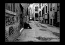 CeyhanPanic-Yıkılmış Hayeller 2010