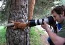 Fotoğraf çekmek