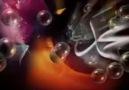 GÜL AHMED'İM sav  ...