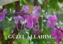 GÜZEL ALLAH'ım  ( Hasan Dursun ) [HQ]