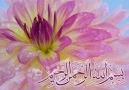 Güzel bir ilahi -  Allah-u Allah