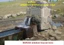 kemale amed heymana @ İNTERNETTE Mehmet ali arslan köyü YAZ ARA [HQ]