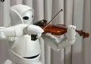 Keman Çalan Robot