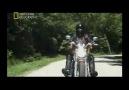 Mega Fabrikalar Harley Davidson Bölüm 2 [HQ]