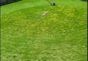 Mühendis nasıl çim biçer.