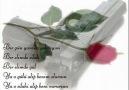 Öksüz MUSTAFA - Koparamam kalbimi
